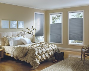 Hunter Douglas Applause Cordlock shades