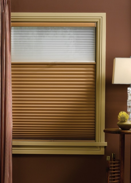 Hunter Douglas Duette Literise Cellular Shade