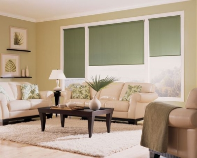green hunter douglas window shades in a groton nh home