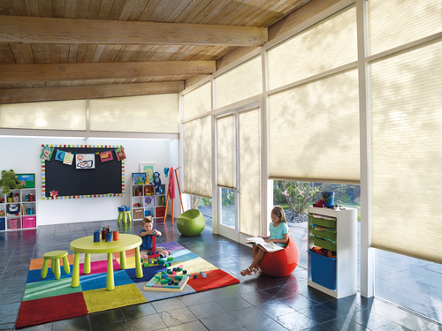 Motorized window treatment diffuse light and set the scene for a productive play room