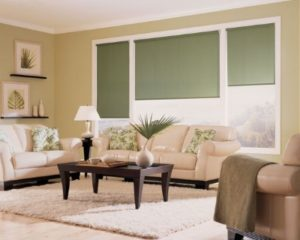 Tuftonboro NH living room with Hunter douglas shades